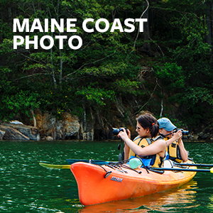 Maine Coast Photo