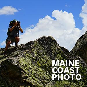 Maine Coast Photo