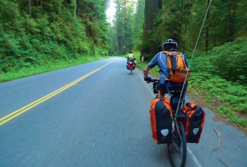 Apogee Adventures teen bike trip California Redwoods