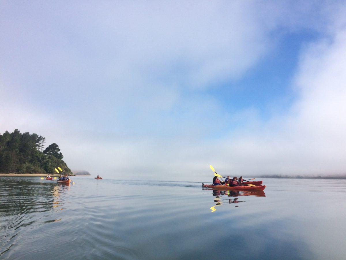 Kayaking with PCB